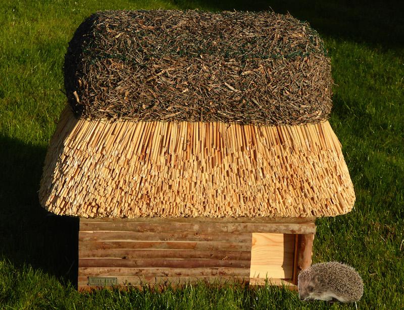 Schöner wohnen auch für Igel: Reethaus als Igelhaus